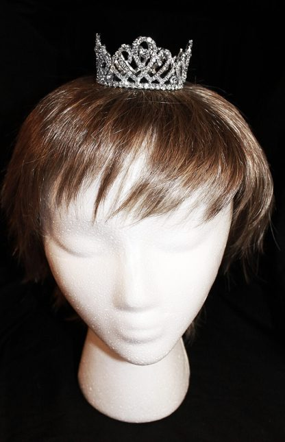 mini crown on model