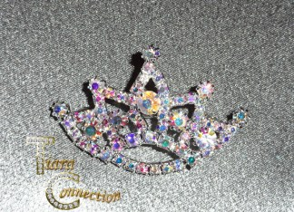 Sash Pins & Crown Brooches