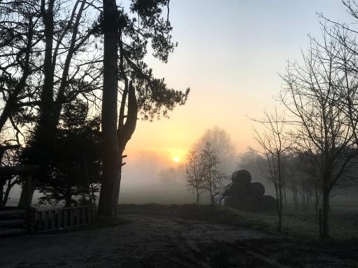 Photograph of a misty yellow-and-orange sunrise viewed between dark trees from a muddy farm track. To the right of the track is a pile of black-plastic-clad hay bales, three levels high.