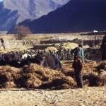 residents near Reting monastery