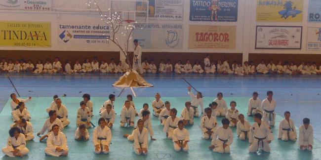 Exhibición Fin de Temporada de Karate