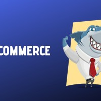 Ecommerce Success - How to Make Your eCommerce Website Successful