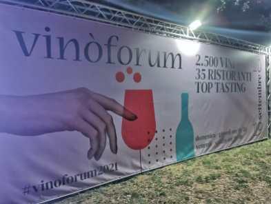 vinoforum 7