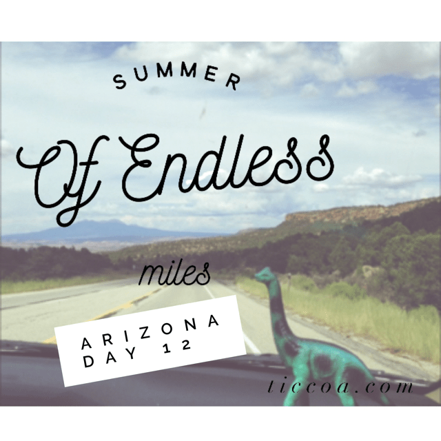 When Life Gives You Lemons: The Summer of Endless Miles, Day 12