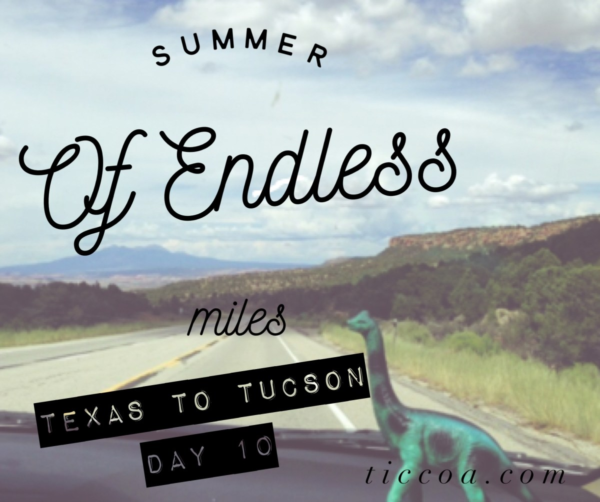 Never-Ending-Texas: The Summer of Endless Miles, Day 10
