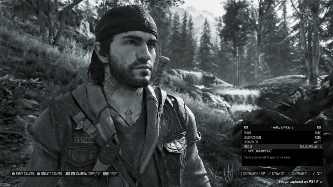 Days Gone Photo Mode Details