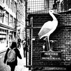 streets-amsterdam