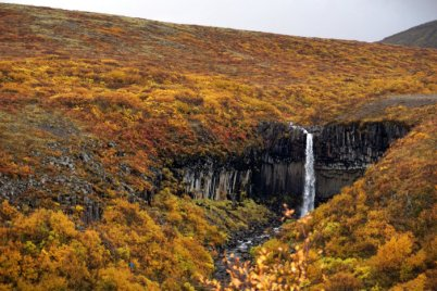 Svartifoss, the Black Waterfall
