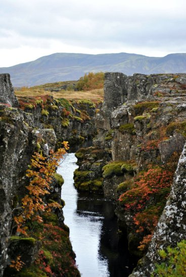 Thingvellir national park - Canyon