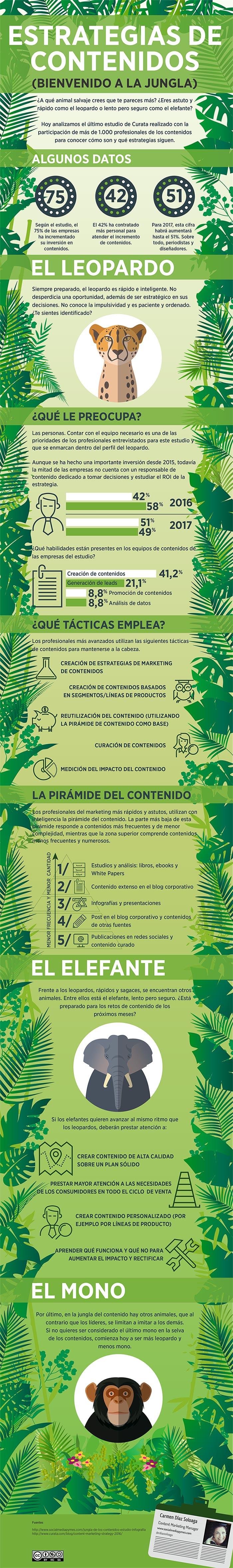 Estrategia de contenidos: Bienvenido a la jungla