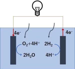 燃料電池の反応