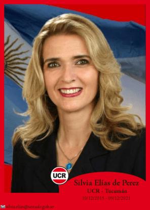 Silvia Elías de Perez