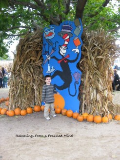 Big brother at the pumpkin patch.