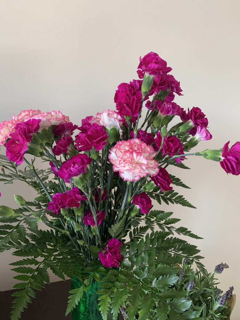 photo of pink and purple flowers