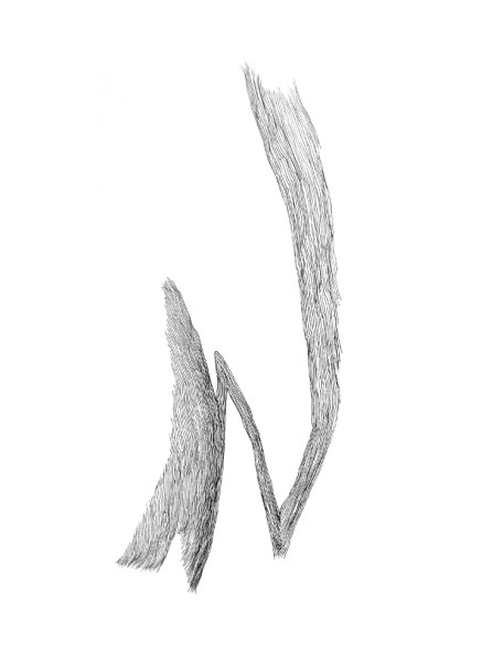 sketchbook drawing by Christina Kwan | tide & bloom