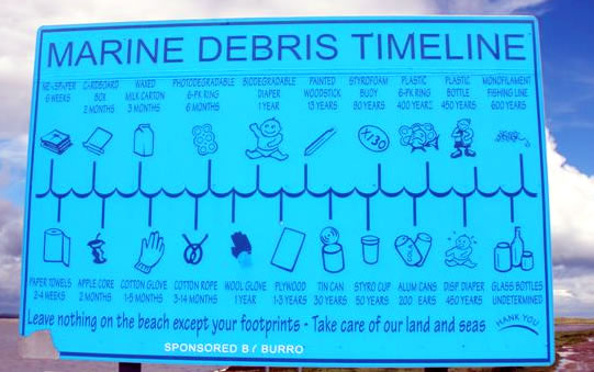 Helpful information about the longevity of litter on an Irish beach