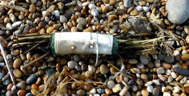 Curious bundle found on the beach