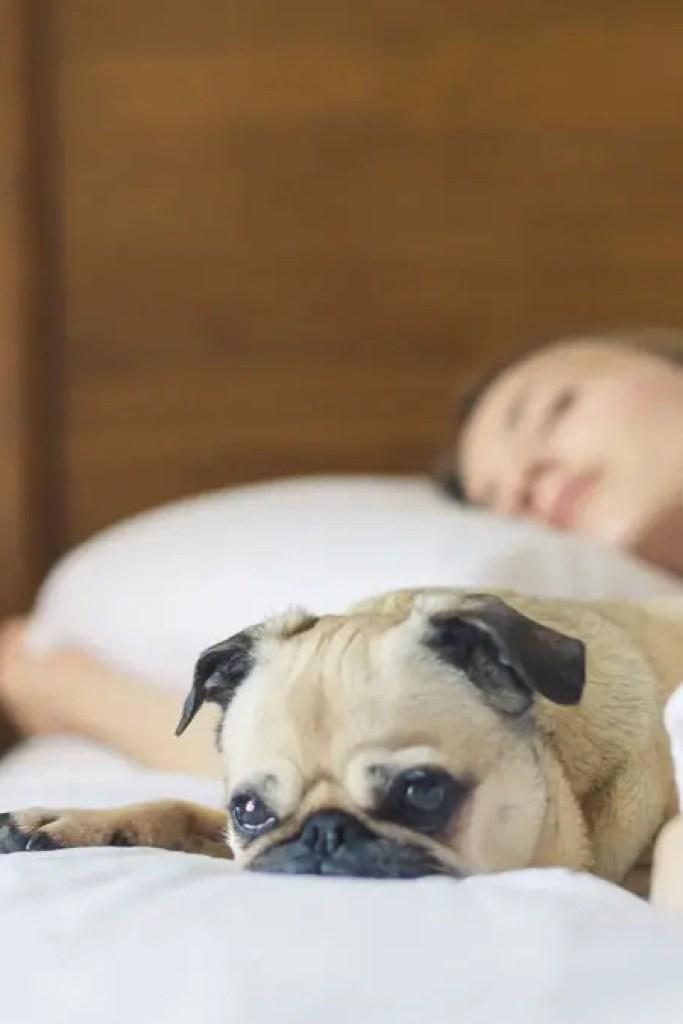 Tidmarsh Tips for Sleeping Well During Corona