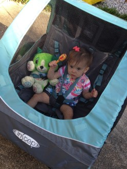 FIrst time in the bike trailer!