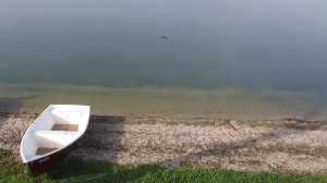 Mystischer Lac de Joux