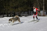 Skijöring. Musher: H. Obrist (AUT)