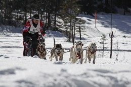 Musher: M. Harkamp (AUT)