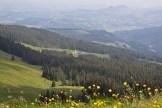 Alp Wusta (Bildmitte)
