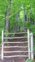 Einstieg in den Elfenweg, ein märchenhaftes Wegstück im Aufstieg