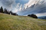 Schöne Wolkenformationen über den Krokussen