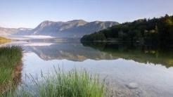 Morgenstimmung am Bohinj See