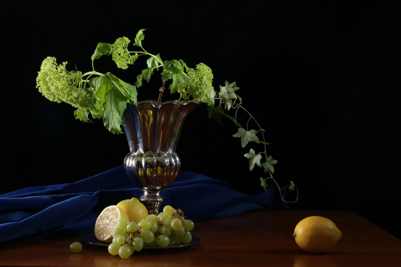 Still Life Photography Gallery Tiegerman Photography