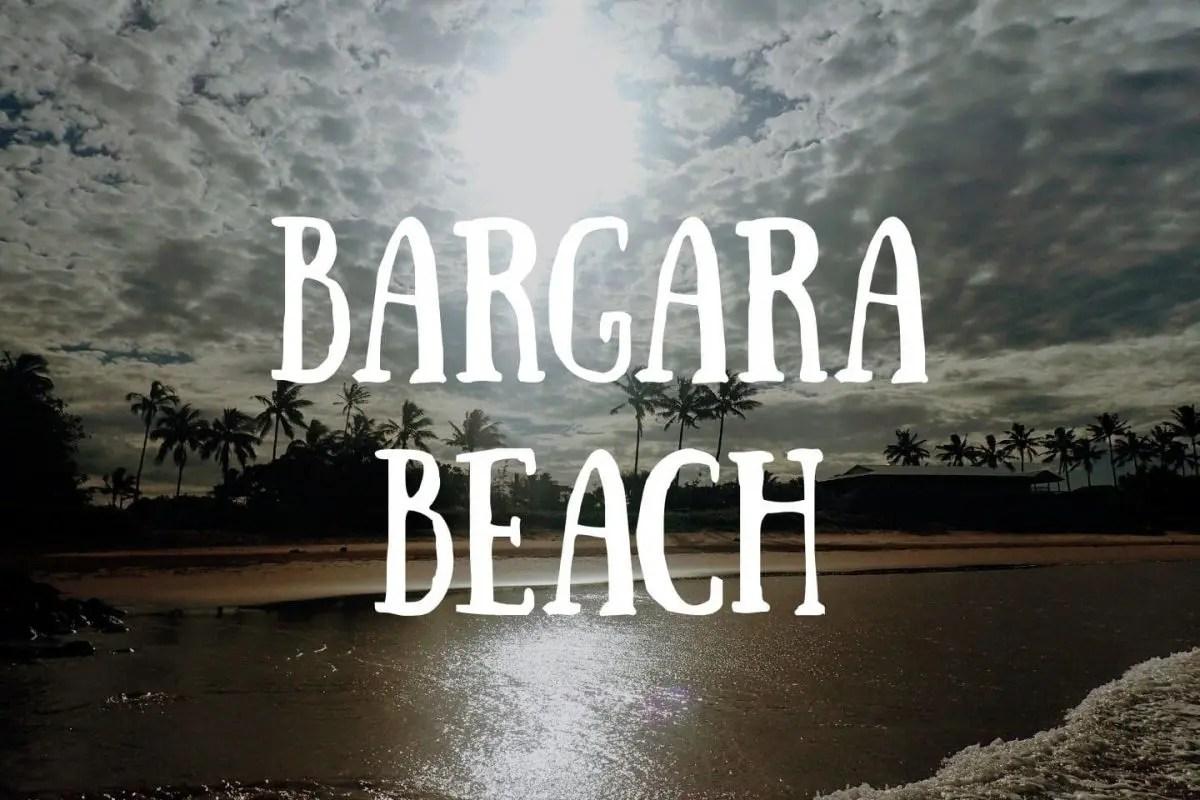 Bargara Beach Tortugas Marinas Australia