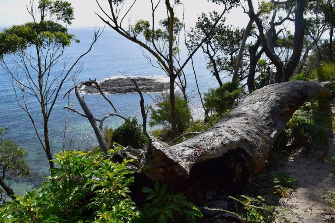 Headland Walking Trails, Booderee National Park, Jervis Bay, NSW, viajar a Australia