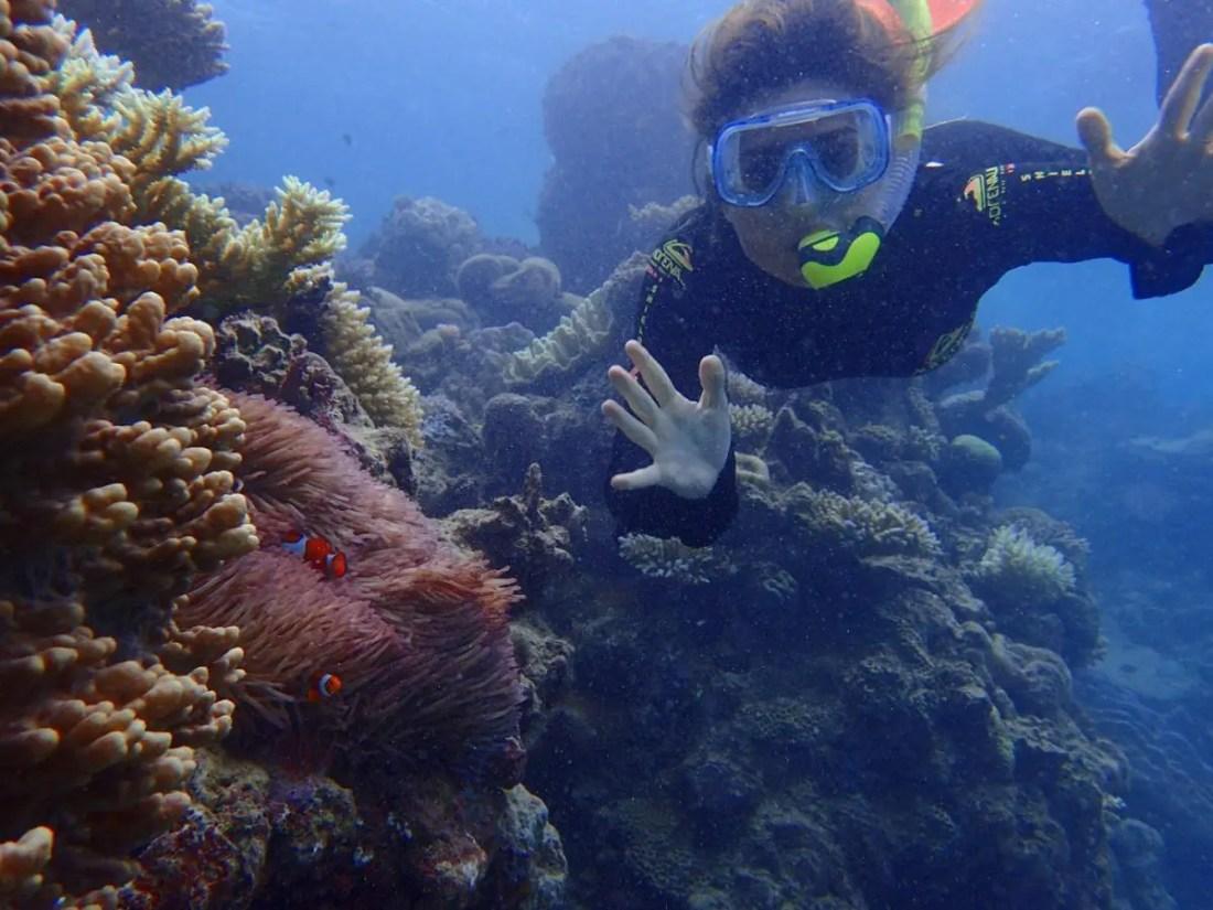 excursiones barrera de coral australia