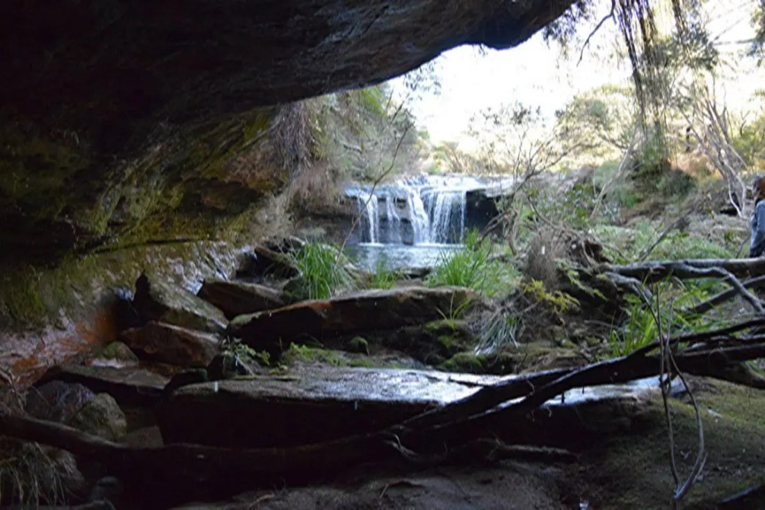 Nellies Glen Picnic Area, Kangaroo Valley, NSW, Viajar a Australia