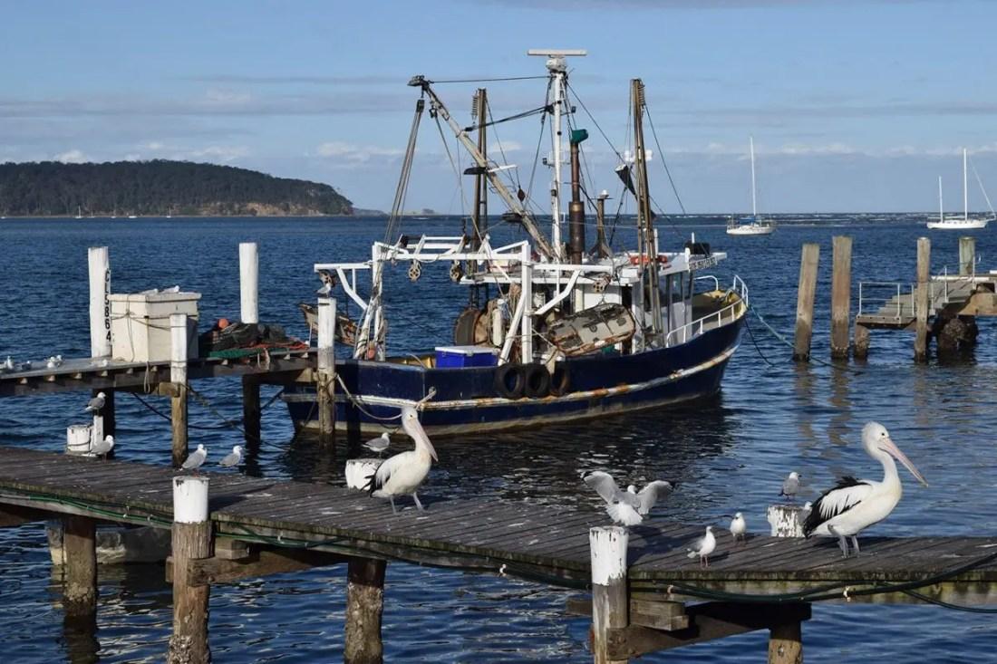 Batesman Bay, costa sur de NSW, Australia @Tiempodexplorar