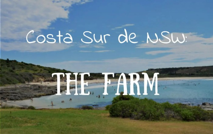 Que ver en la costa sur de NSW The Farm Australia