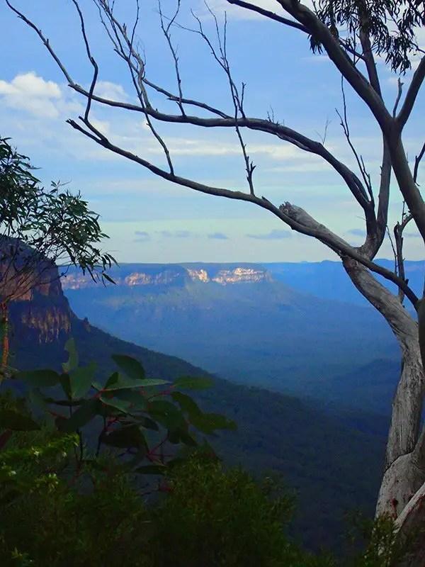 Blue Mountains National Park, NSW, Australia