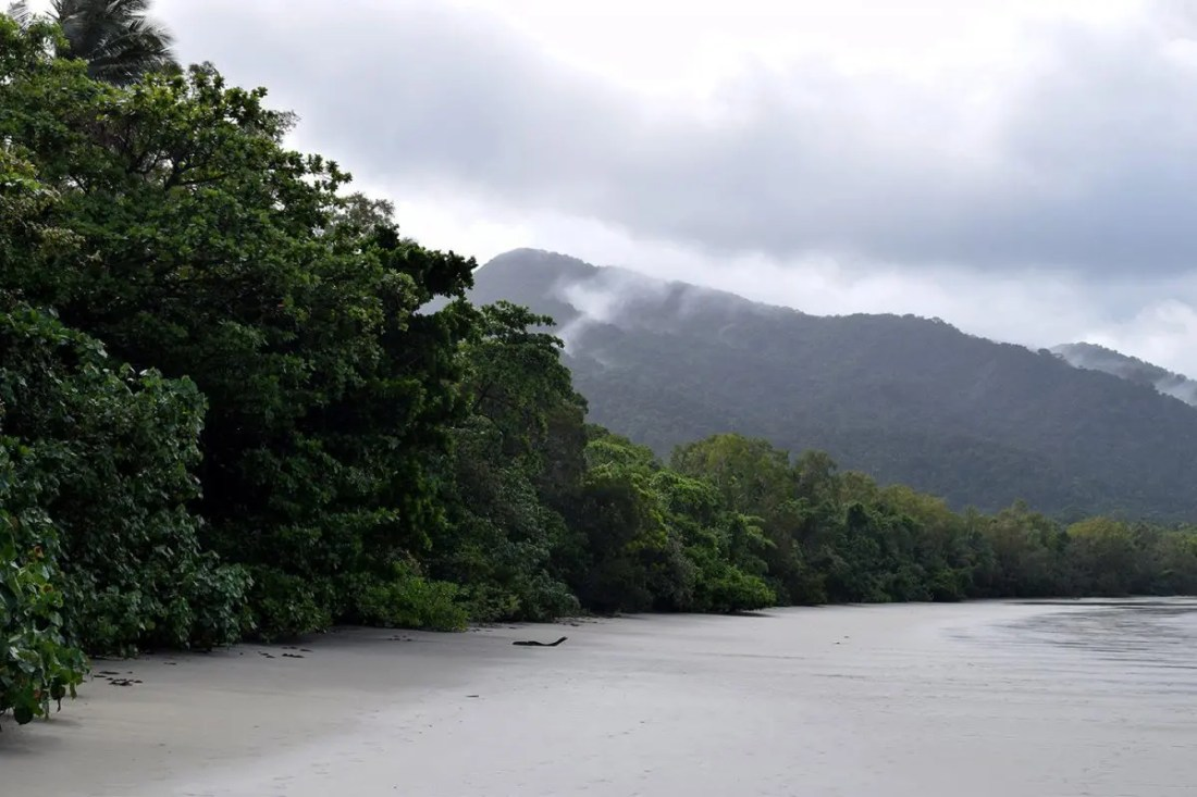 Cape Tribulation Quennsland Australia