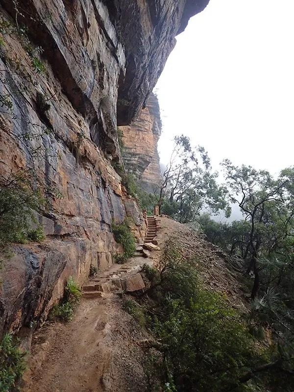 National Pass Track NSW Blue Mountains NSW Australia