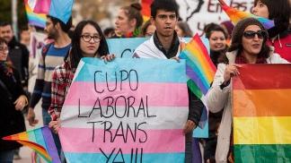 Ley de Cupo Laboral Trans mercado de trabajo