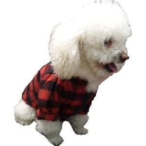 lenadora roja perro m