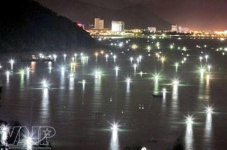 Đây chính là những gì mình nhìn thấy ở bãi biển Quy Nhơn buổi tối. Nguồn: Facebook Quy Nhơn Land