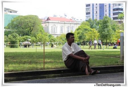 Một chú đang mặc váy ở công viên ngay giữa trung tâm thành phố.