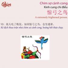 Chimsocanhcong