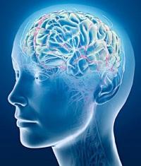 Повышенная возбудимость нервной системы у женщин. Раздражительность: из-за чего она возникает и как с ней бороться