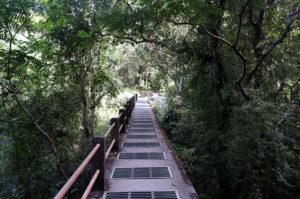 Lombok-Wasserfall-1-9
