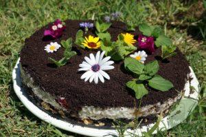 Blumenerde-Milchreiskuchen
