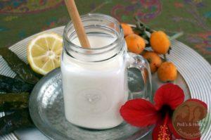 Ayran – Joghurtgetränk