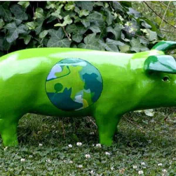 Ferkel Jubiläum Green